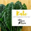 Try Some Super Kale