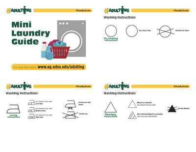 Mini Laundry Guide Page 1