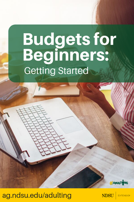 Budgets for Beginners Getting Started