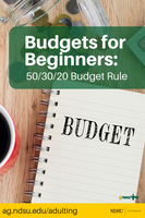 Budgets for Beginners 50 30 20 Budget Rule