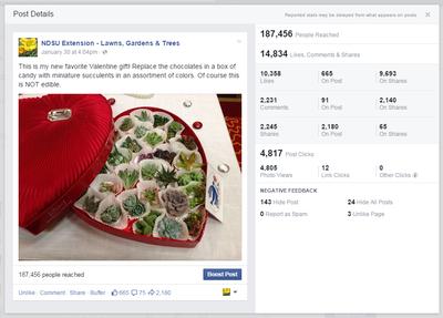 LGT Succulents Facebook Post