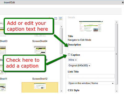 Adding Captions in Ag CMS