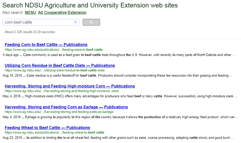 Search results for corn beef cattle