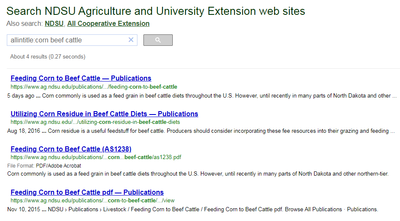 corn beef cattle search 2