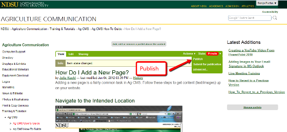 Add new page publish