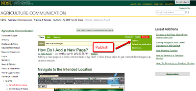 Add new page publish