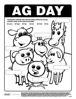 Ag Day Coloring Sheet - K-3, 2020