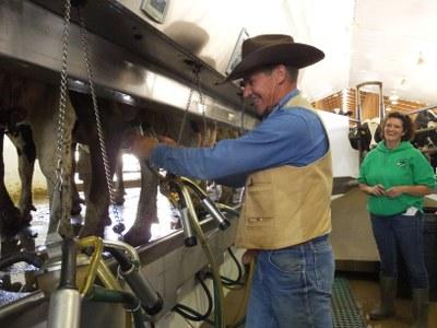 Curt Pate milking Van Bedaf Dairy
