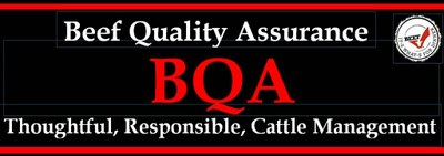 171010 BQA Thoughtful responsible cattle management