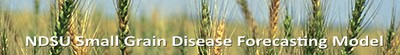 Small Disease banner