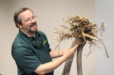 Speaker showing tree roots