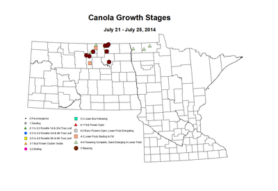 7 21 7 25 Canola GrowthStages ZGS