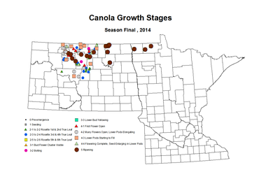 Season Finall Canola GrowthStages ZGS