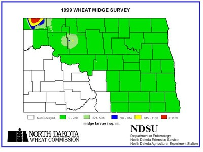 1999 Wheat Midge Map