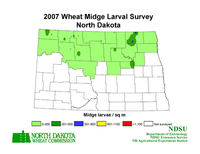 2007 Wheat Midge Map