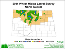 11 Wheat Midge Map