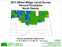 11 Wheat Parasitoid Map