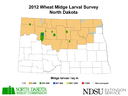 12 Wheat Midge Map