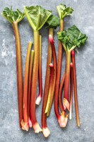 All About Rhubarb
