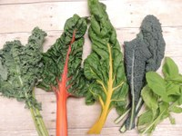 Homegrown Greens Provide More Variety