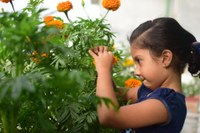 Kids in the Garden: Introducing Gardening to Youth