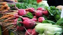 Let the Fall Harvest Begin and Purchase Locally