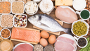 What Are the Food Sources of Protein?