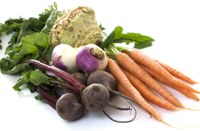 Enjoy the Bountiful Harvest of Fall Vegetables