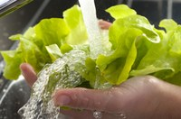 Handle Fresh Fruits and Vegetables Safely