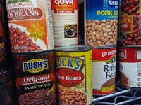 Is Frozen Canned Food Safe?