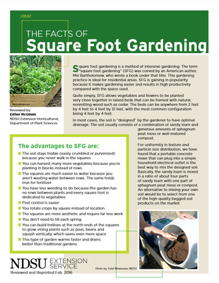 The Facts of Square Foot Gardening