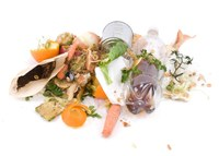 Food Loss and Waste in the US: The Science Behind the Supply Chain
