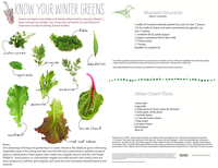 Know Your Winter Greens