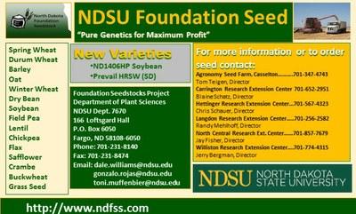NDFSS