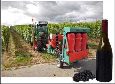 agrothermal wine