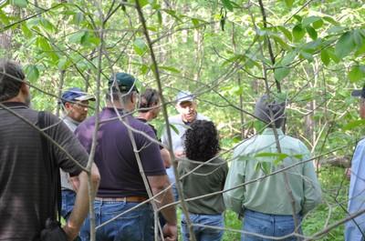 GPTPC in KS forest