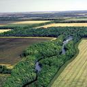 Riparian Forest Buffer