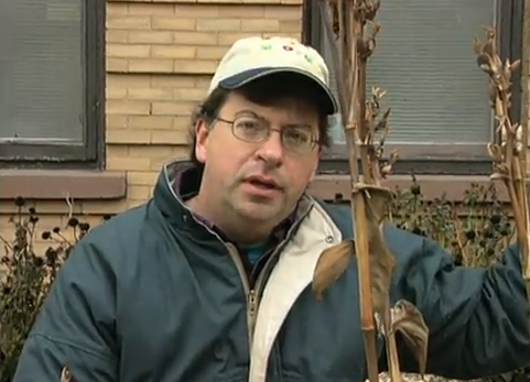 Caring for Flowers in the Fall - Video