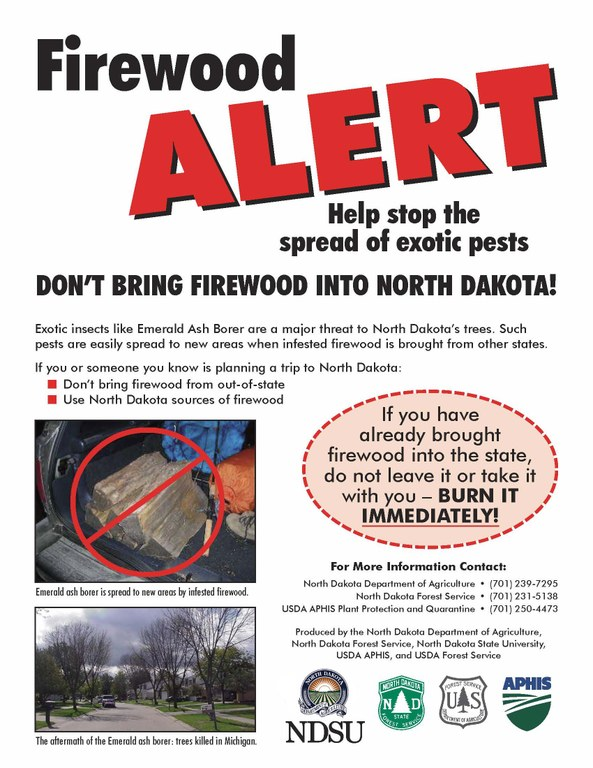 "Firewood Alert - flier developed by ND Forest Service.  Urging all campers and others, ""Don't move firewood"", and ""Burn it where you buy it."""