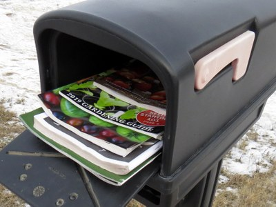 Seed catalogs in mailbox