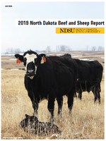 2019 Beef and Sheep Report Cover