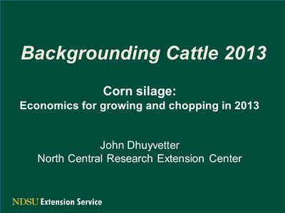 Corn silage economics