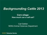 Feed Costs and Rations for Backgrounding Calves