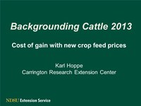 Systems and Budgets for Backgrounding Calves