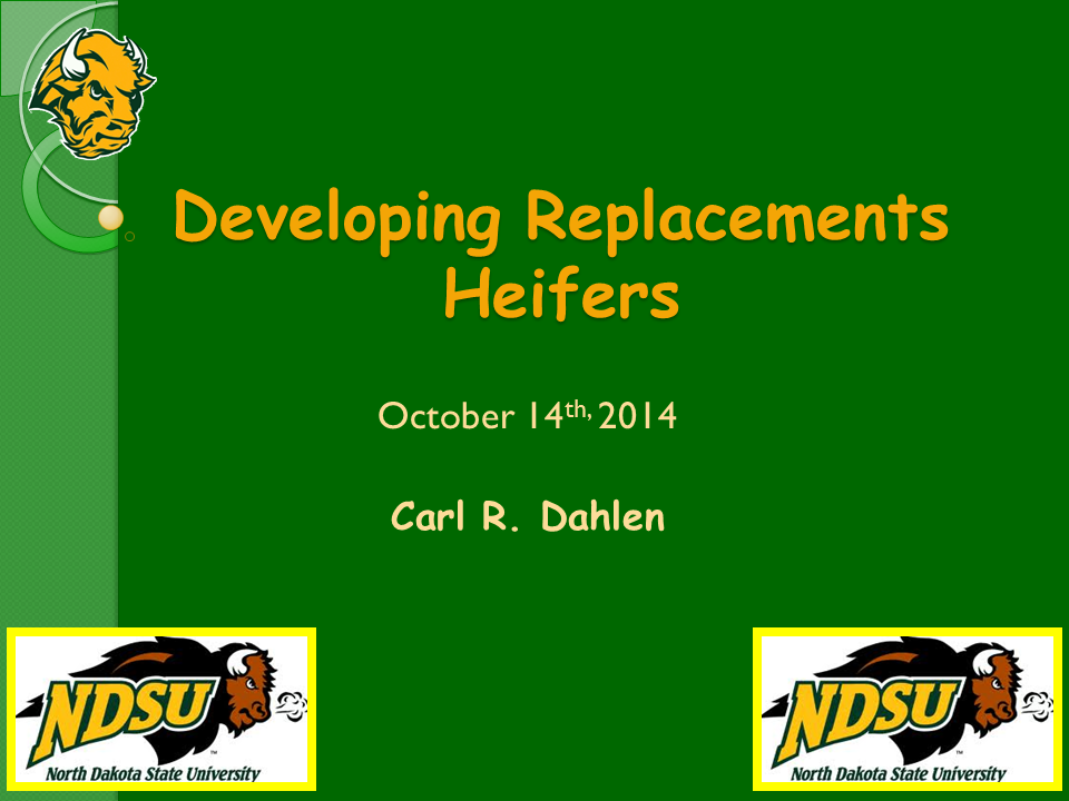 Developing Replacement Heifers Slide