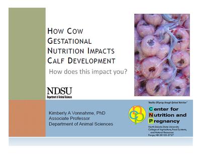 How Cow Gestational Nutrition Impacts Calf Development - Title Slide