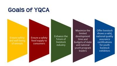 Goals of YQCA