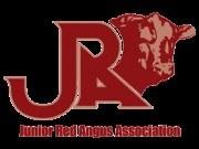 Jr Red Angus.jpg