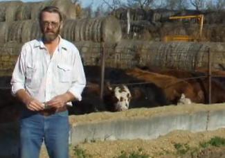 Dale Naze on Feeding Backgrounded Cattle