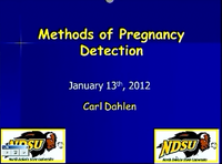 Pregnancy Detection